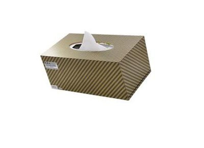 tissue box hidden camera